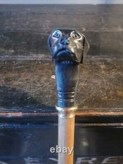 An Antique Carved Dogs Head Walking Stick