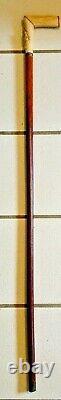 Antique 19th C Greyhound Whippet Carved Bone Handle Cane Walking Stick