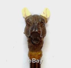 Antique Automaton Carved Boxer Dog Head Austrian Handle Walking Stick Cane Glass