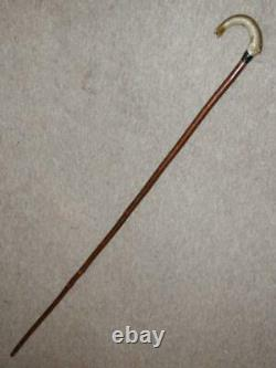 Antique Birch Walking Stick/Cane With Hand-Carved Salmon Fish Handle 138cm
