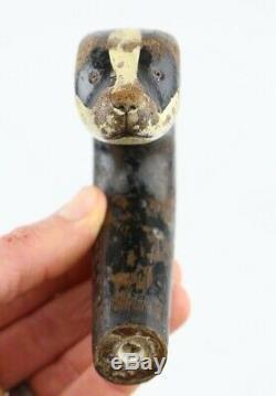 Antique Carved Badger Head Walking Stick Cane Handle Curved Odd Old vtg