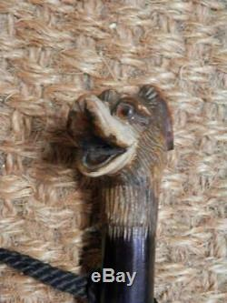 Antique Carved Dog Head Walking Stick With Glass Eyes And Silver Collar C&S