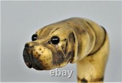 Antique Carved Foxhound Dog Cane Walking Stick Handle