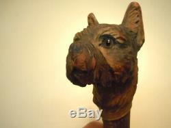 Antique Fantastic Carved wood Dog Head Cane Walking Stick, glass eyes Ca 1890