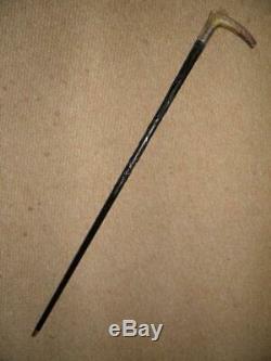 Antique Hallmark Silver 1902 Irish Bog Oak Hand Carved Clover Walking Cane/stick