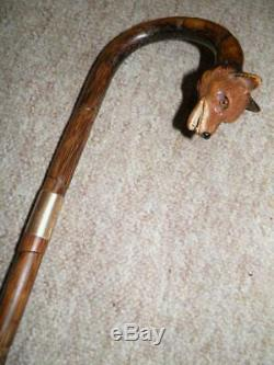Antique Hand-Carved Fox Crook Handle Walking Stick With H/M Gold Collar 9CT'1919