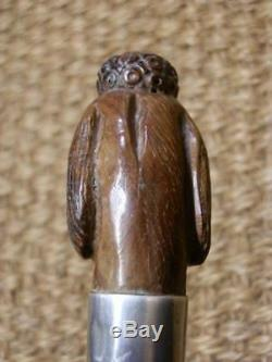 Antique Hand-Carved Poodle Walking Stick Hallmarked Silver Collar London 1898
