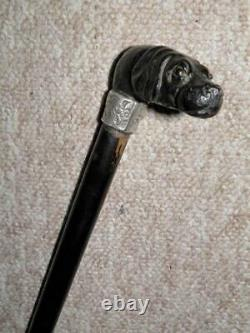 Antique Hand-Carved Treen Great Dane Top Walking Stick/Cane-Silver Buckle Collar