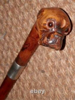 Antique Hand-Carved Walnut Boxer Dog Walking Stick/Cane Glass Eyes Silver 1929
