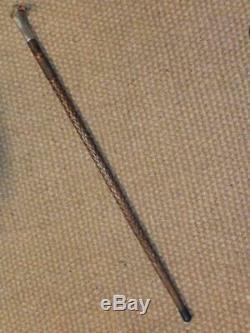 Antique Hand-carved Bird Head Hallmarked Silver Collar London 1904 Walking Stick