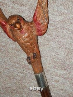 Antique Kendall Walking Stick Hand-Carved Parrot Handle Silver Collar H/m 1923