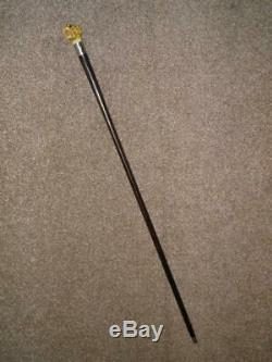 Antique Rosewood Walking Stick/Cane With A Carved Snarling Dogs Head Top