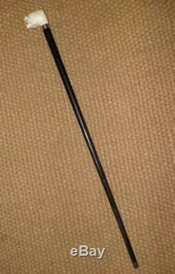 Antique Silver Ebony Walking Stick/Cane With A Carved Snarling Dogs Head Top