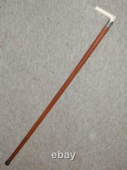 Antique Walking Stick/Cane With Carved Handle & Nickel Silver Fox Collar 81.5cm