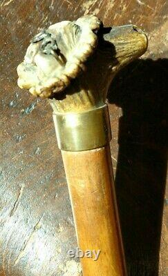 Antique Walking Stick Cane with Carved Horn Figural Smiling Woman Hat & Glasses