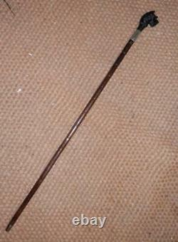 Antique Walking Stick With Westie Hand-Carved Top & H/M Silver Collar 1920's