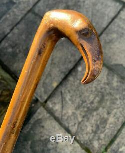 Antique Walnut/Fruit Wood Hand Carved Bird Head Novelty Walking Cane Stick