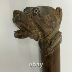 Antique walking stick cane Carved Dog Glass Eyes Victorian 87cm
