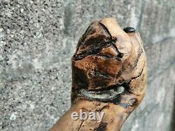 Barn Find Antique Figural Bulldog / Boxer Hand Carved Walking Stick / Cane