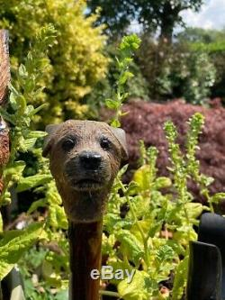Border Terrier Head Carved from Lime on Blackthorn Shank Walking stick