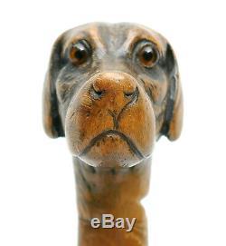 C1870, FINE ANTIQUE 19thC CARVED DOG HOUND HEAD WALKING STICK WITH GLASS EYES