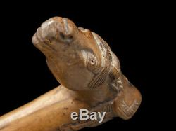 C1880 Kepkypa Corfu Carved Horse Head Walking Stick