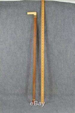 Cane walking stick carved cattle bone Victorian Edwardian 1890 antique original