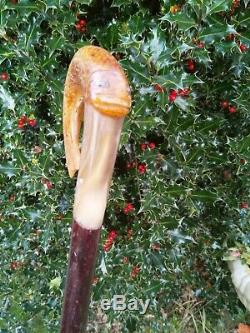 Carved Rams Horn Shepherds Crook Trout Walking Stick
