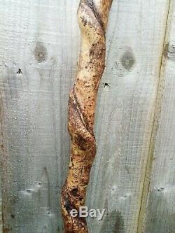 Curlew head carved by hand on spectacular hazel twister walking beating stick