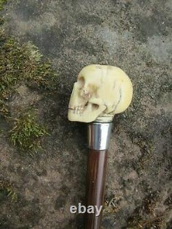Edwardian Carved Skull Walking Stick Hallmarked Collar London Maker JH 1902/03