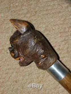 Elizabethan Hand Carved Snarling Dog H. M Silver Walking Stick. 35.1/2 Brigg