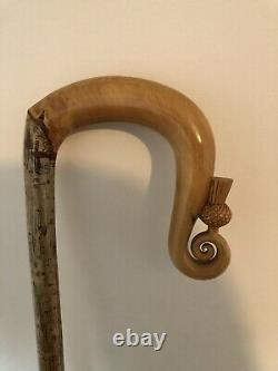 HAND CARVED HAZEL CROOK one piece walking stick Excellent quality