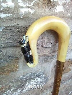Rams horn walking stick with Border Collie carving (one of a His and Hers pair)