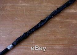 Silver Topped Bog Oak Walking Stick. Folk Art Hand Carved Snake Cane 1888