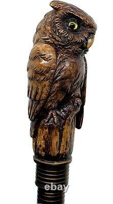Stunning walking cane walking stick with figural owl head carving c. 1900