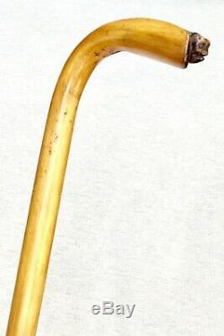 Vintage Antique 1800 Carved Wood Horse Head Crook Handle Walking Stick Cane Old