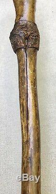 Vintage Antique 1800 Primitive Folk Art Carved Wood Massive Walking Stick Cane