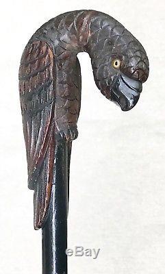 Vintage Antique Estate Parrot Carved Wood Handle Walking Stick Cane Old 42L