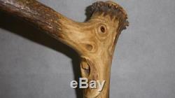 Vintage Carved Face WithGlass Eyes- Gents Bamboo Walking Stick 100cm