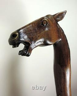 WALKING STICK'Rose Wood Hand Carved' Horses Head